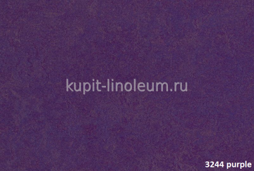 Forbo Marmoleum Real  3244 purple.