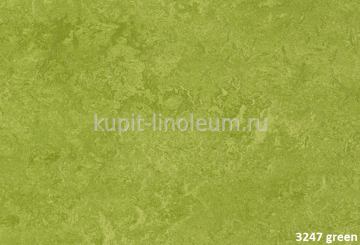 Forbo Marmoleum Real 3247 green.