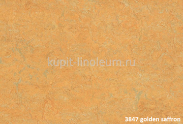 Forbo Marmoleum Fresco 3847 golden saffron.