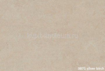 Forbo Marmoleum Fresco 3871 silver birch.