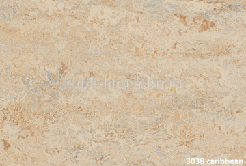 Forbo Marmoleum Real 3038 caribbean.
