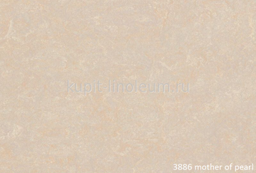 Forbo Marmoleum Fresco 3886 Mother of pearl.