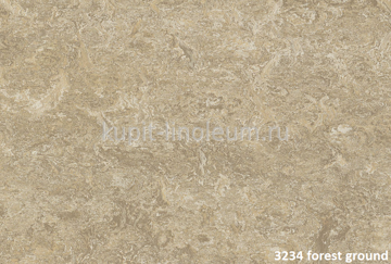 Forbo Marmoleum Real 3234 forest ground.